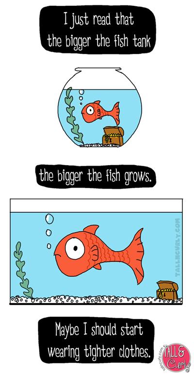 Tall N Curly - Fish tank